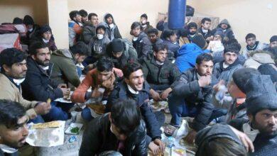 Photo of Şanlıurfa'da 85 düzensiz göçmen yakalandı