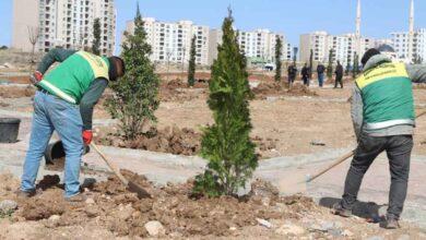 Photo of Seyrantepe yeni parklarla yeşilleniyor