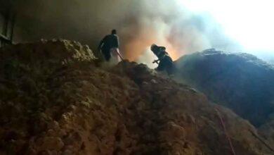 Photo of OSB'de Yangın! Sazlıklar Tutuştu