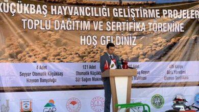 Photo of Şanlıurfa DKKYB'de Sertifika Töreni Yapıldı