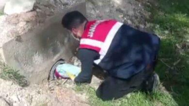 Photo of Urfa'da Sulama Borusunda Silah Çıktı