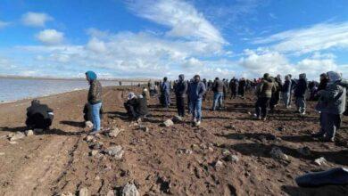 Photo of Urfa'da Kaybolan Gençleri Arama Çalışmaları Sürüyor