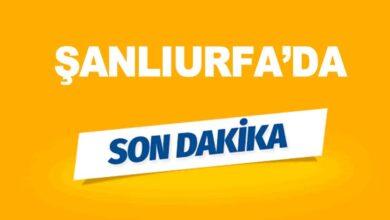 Photo of Son Dakika! Şanlıurfa'da İntihar