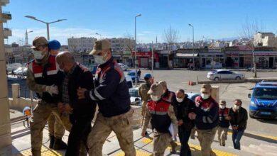 Photo of Şanlıurfa'da kablo hırsızları yakalandı