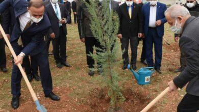 Photo of Osmanbey'de Bir Orman Oluşturuluyor