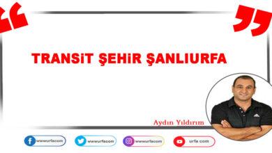 Photo of Transit Şehir Şanlıurfa