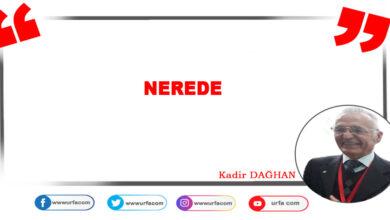 Photo of Nerede