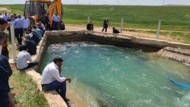 Photo of Urfa'da Sulama Kanalına Giren Genç Kayboldu