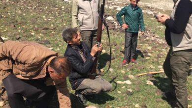 Photo of Şanlıurfa'da kaçak avlanan şahıs yakalandı