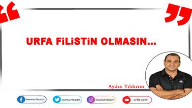 Photo of Urfa Filistin olmasın…