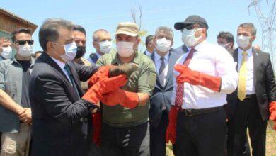Photo of Şanlıurfa'da 'Dünya Biyoçeşitlilik Günü' kutlandı