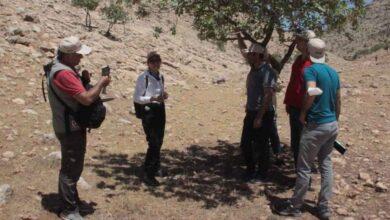 Photo of Şanlıurfa'nın bozkırlarının biyolojik yapısı tanıtıldı