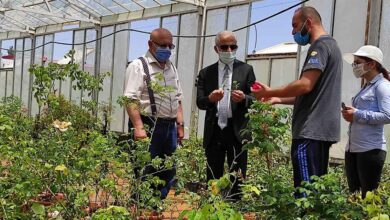 Photo of HRÜ'de Karagül ile İlgili Çalışmalar Devam Ediyor