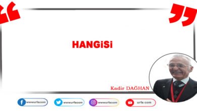 Photo of Hangisi