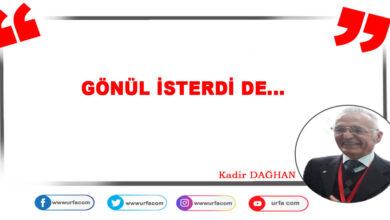 Photo of Gönül isterdi de…