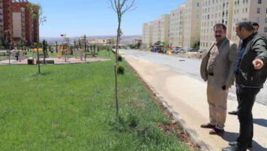Photo of Baydilli Seyrantepe'deki yeni parkı inceledi