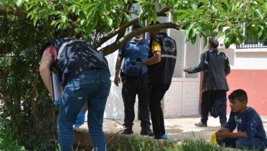 Photo of Urfa'da akrabalar arasında silahlı kavga: 2 yaralı
