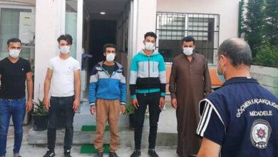 Photo of Urfa Sınırından Kaçak Giren Suriyeliler Turistiz Dedi