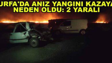 Photo of Urfa'da Anız yangını kazaya neden oldu: 2 yaralı