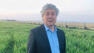 Photo of Urfa ZMO Başkanı Arpa ve Buğday maliyetlerini açıkladı