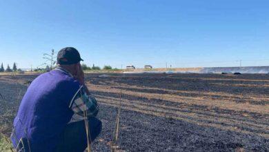 Photo of Urfa'da çiftçi karşılaştığı manzara karşısında yıkıldı