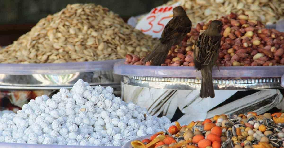 Şanlıurfa'da Bayram tezgahları kuşlara kaldı