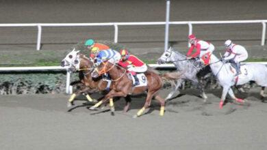 Photo of Şanlıurfalı Jokey Yarışa Birinci Oldu