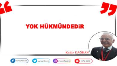 Photo of Yok Hükmündedir