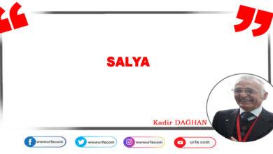 Photo of Salya