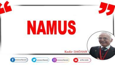 Photo of Namus