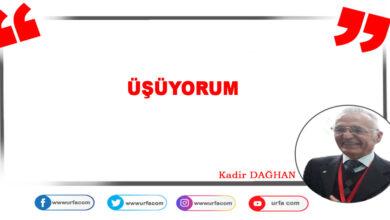 Photo of Üşüyorum