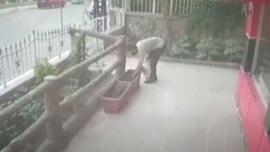 Photo of Şanlıurfa'da Görülmemiş Hırsızlık