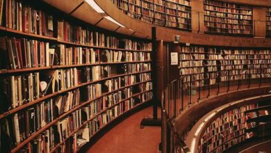 Photo of Şanlıurfa'daki Kütüphane Sayısı Açıklandı