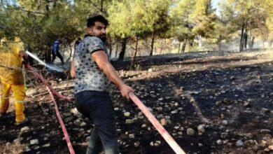 Photo of Şanlıurfa'da Orman yangını