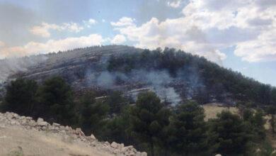 Photo of Urfa'da Ormanlık Alanda Korkutan Yangın