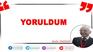 Photo of Yoruldum