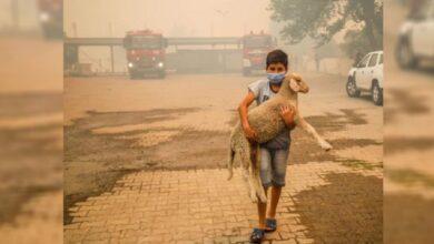 Photo of Yangının simgesi olan çocuk Urfalı çıktı