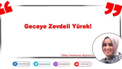 Photo of Geceye Zevdeli Yürek!
