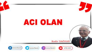 Photo of Acı Olan