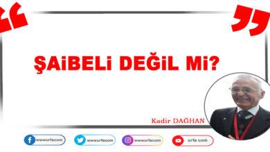 Photo of Şaibeli değil mi?