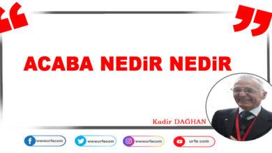 Photo of Acaba Nedir Nedir
