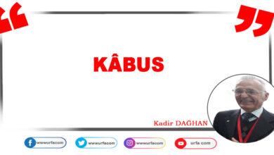 Photo of Kabus