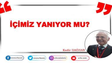 Photo of İÇİMİZ YANIYOR MU?