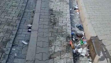 Photo of Siverek Çöp İçinde Yüzüyor! Belediye Hizmet Vermiyor