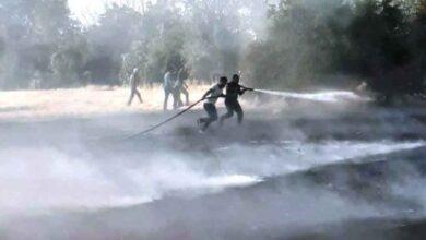 Photo of Ceylanpınar'da anız yangını