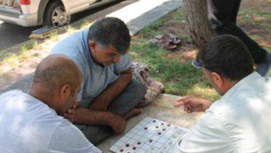 Photo of Şanlıurfa'da Dama oyunu yaşatılıyor