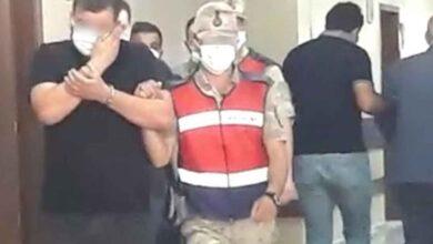 Photo of Şanlıurfa'da hayvan hırsızları yakalandı