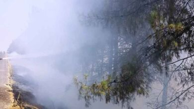 Photo of Ağaçlık alanda yangın çıktı!