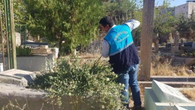 Photo of Viranşehir'de mezarlıklarda bakım ve onarım çalışması