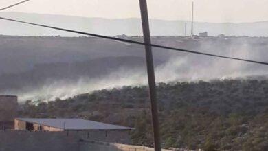 Photo of Halfeti'de ağaçlık alanda yangın çıktı